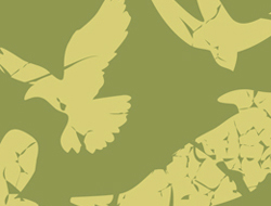 Tesco Grunge Birds Apparel Treatment