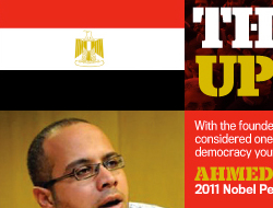 A&AA Uprising in Egypt Invitation